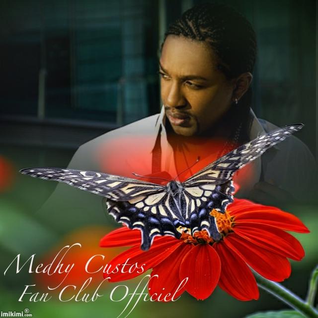Medhy papillon